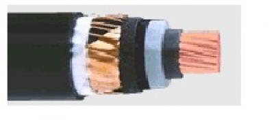 Силови за средно напрежение - СХЕкТ 12/20 kV